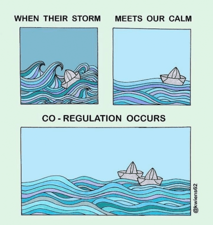"Image of a boat on rocky waters alone, then smooth alongside another boat with text ""When their storm meets our calm, co-regulation occurs"". By kwiens62. Polyvagal Theory visualisation."