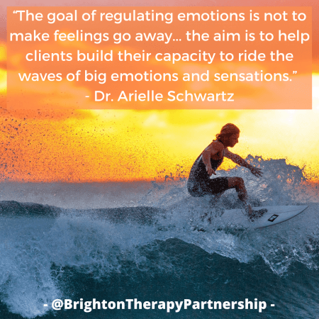 "Image of a surfer against sunset background. Quote reads: ""The goal of regulating emotions is not to make feelings go away... the aim is to help clients build their capacity to ride the waves of big emotions and sensations."" - Dr. Arielle Schwartz"